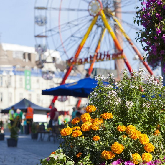 Фестиваль «Цветочные недели»
